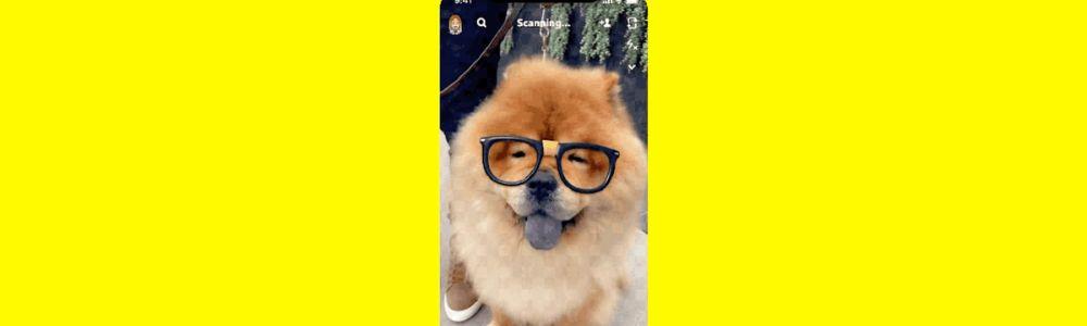 Snapchat Launches New Dog Identifying Technology