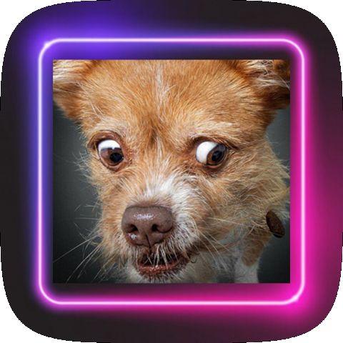 Smiley dog v1.0.0