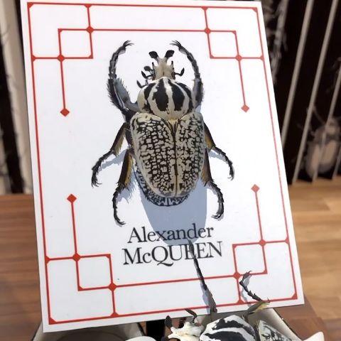Alexander McQueen - Levels Pop-up