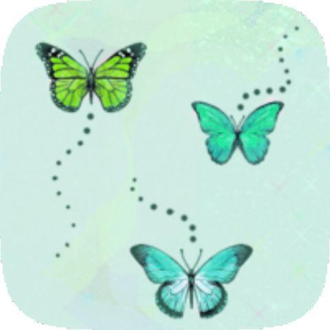Butterfly Pretty III