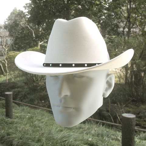 Screaming cowboy