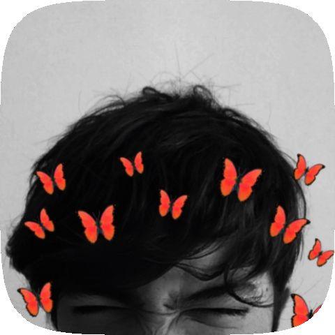 Butterflies Filter