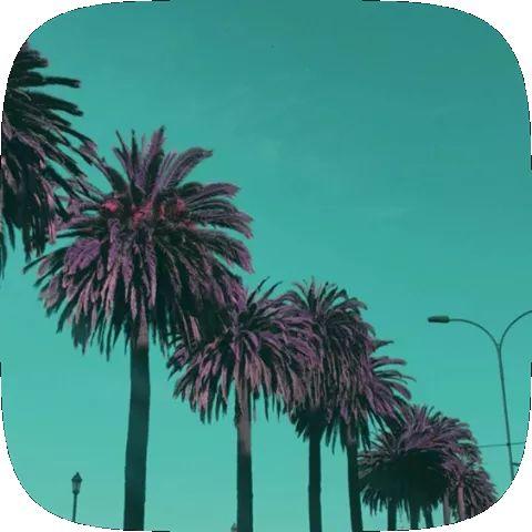 Crazy Lut AR Instagram Filter