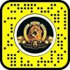 Lion Metro Goldwyn Mayer