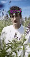Jungle Flowers - Lens Studio