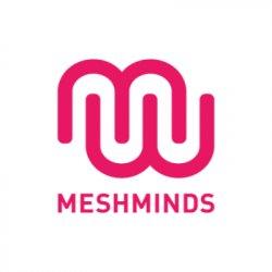 MeshMinds